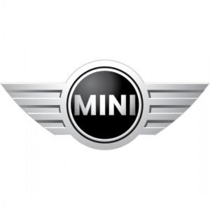 Mini-Logo_132pxl-x-132pxl-300x300